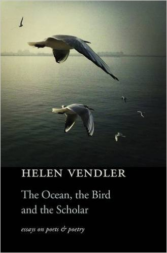ocean bird scholar.jpg